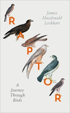 Raptor: A Journey Through Birds